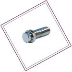 Stainless Steel Ferry Cap Screws
