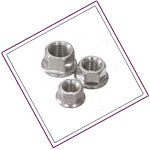 Stainless Steel XM19 Flange Nuts