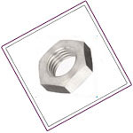Stainless Steel Hex Machine Screw Nuts