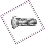 Stainless Steel Plow Bolts
