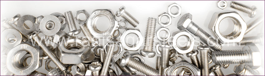 317 / 317L Stainless Steel Bolts