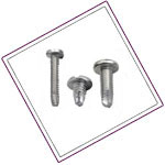Hastelloy C276 Thread Cutting Screw